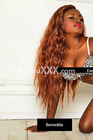 Black Escort Brussels - Ebony Escort & Erotic Massage in Belgium